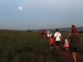 moonlight_walk