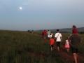 moonlight_walk